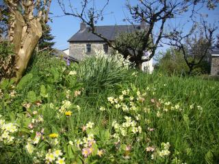Gorslwyd Cottages ,B+B and conference centre, Aberporth