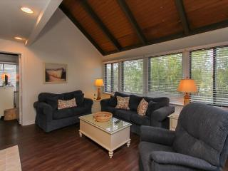 62 Night Heron-Fully renovated top/bottom, super Cute & Quick walk to beach, Hilton Head