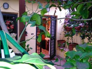 Centrale Pigneto microvillino con giardino 38ex2