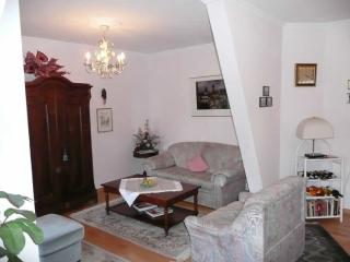 LLAG Luxury Vacation Apartment in Baden Baden - nice, clean (# 254), Baden-Baden