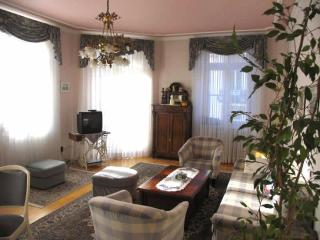 LLAG Luxury Vacation Apartment in Baden Baden - spacious, nice, clean (# 252), Baden-Baden