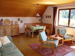 Vacation Apartment in Schluchsee - 753 sqft, comfortable, well-furnished