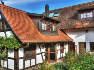 Vacation Home in Rheinau (Baden) - 1722 sqft, charming, spacious, clean (# 660), Lichtenstein-Honau