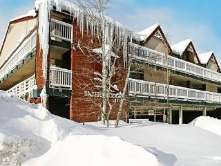 1BR Condo at The Skiers Lodge walk to Ski Lift!