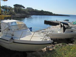 baia d'argento-servizio boat