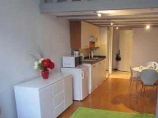 Studio en plein centre de Nice avec mezzanine, Niza