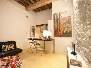 Artistic Home in the Historic Center of St. Niccol, Firenze