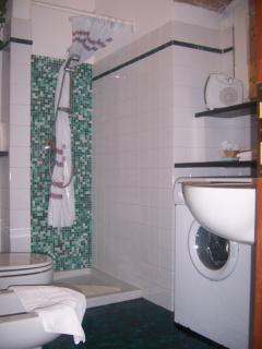 In the bathroom there is a shower, a washing machine, hair dryer and towels.