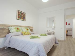 Flat 10 minutes from trastevere, Rome