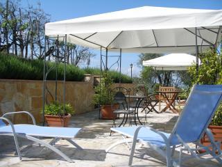 Chianti, La Pruneta, nacque Studio, Radda in Chianti