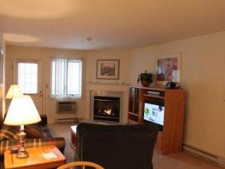 1BR condo with TV/DVD/VCR and King bed - A2 203A, Lincoln