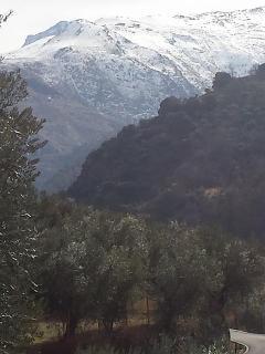 vistas de sierra nevada desde el cortijo