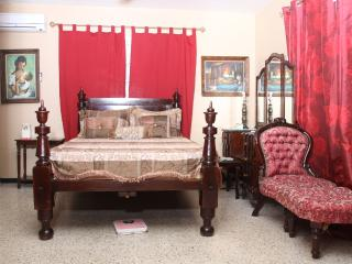 Safe Deluxe Suite Near Shopping Plazas, Fun, Bus, Kingston