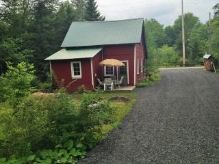 Adirondack Cottage- 10 Miles south of Old Forge, Forestport