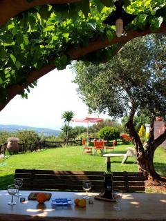 garden outdoor dining area