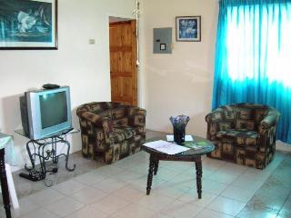 Riocho Retreat 1-BR Apartment near plazas,  beach