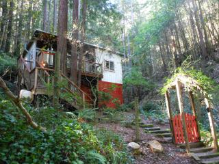 The TreeHouse- Charming Cabin in the Redwoods