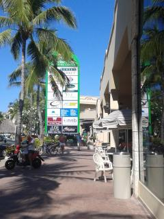 Paradise Village Mall Behind the Condo, Two Minutes Walk