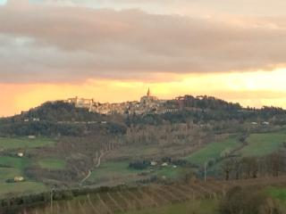 View of Todi from the house