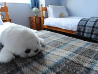 Self Catering Shetland 9 Quality Apartments 4&3*, Lerwick