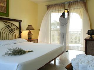 Confers Beach Tropical Junior Suite