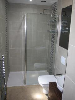Luxury Walk in shower room