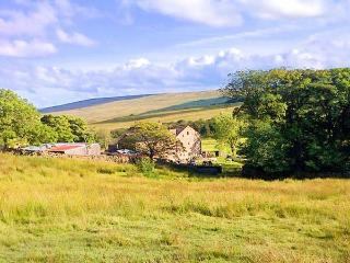 NETHERGILL FARM BYRE, woodburner, en-suite, WiFi, king-size bed, in Oughtershaw, Ref. 22132, Buckden