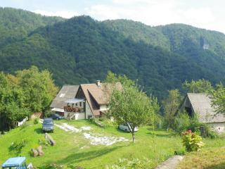 Tilnik Farmhouse Sovenia Rural Retreat Apt 1, Cerkno