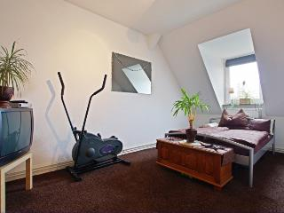 ID 4767 | 2 room apartment | WiFi | Laatzen
