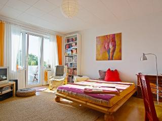 ID 3414 | 2 room apartment | WiFi | Hannover