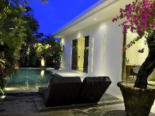 Modern Villa  2 bd Seminyak
