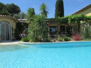 Villa avec piscine et jardin exotique