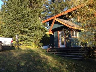 Ski In / Ski Out cabin / house from $200 Burfield