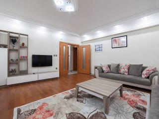 Majestic Flat,Close to Sultanahmet, Estambul