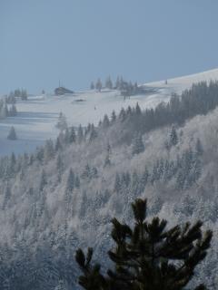 View of the Zwölferhorn ski area taken from the balcony