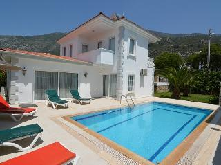 GLV-302 3 Bed. Holiday villa in Ovacik Oludeniz, Ölüdeniz