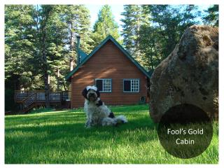 Fools Gold Cabin: Peaceful 10 acres, Sierra views, Emigrant Gap