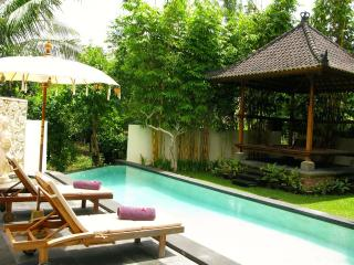 20 % Discount for bookings of  5 nights or longer, Ubud