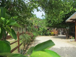 Casa Mango is located in Surfside Estates - a lush neighborhood with beautiful trees and garden