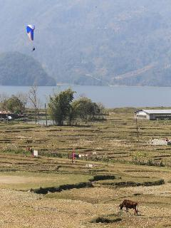 Paragliding and farming near the house.