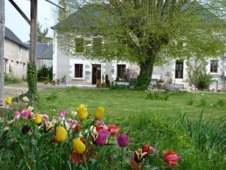 La Ferme du Temple- charme, style, et tradition, Saint-Epain