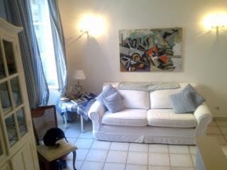 Rue Felix Faure 2 Bedroom Flat with WiFi, by the Beach and Palais du Festival, Cannes