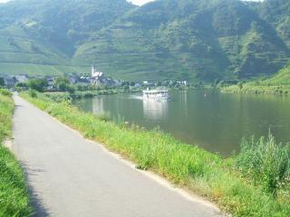 Bremm Mosel Hoilday home