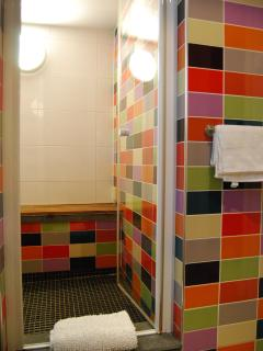 Shower room and steam room