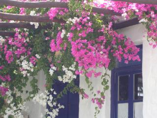 PAROS : HOUSE TO RENT, Golden Beach