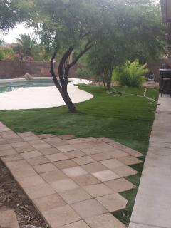 Back Yard Pool Turf