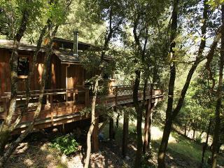 Chalet - cabane integre dans les arbres tt confort