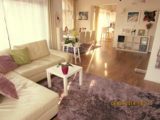 Cozy and modern 120 m2 apartment, Kastav