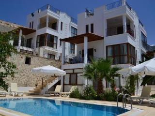 3 Bedroom Turkey rental villa with seaview, close town, private pool, family