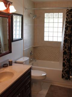 Newly renovated bathroom with hair dryer, tub, and shower.